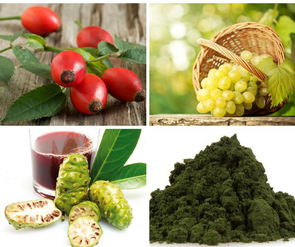 MyPlankton™ ingredients