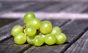 PanaSea Ingredient – White Grape (Vitis vinifera)