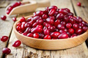 PanaSea Ingredient - Cranberry (Vaccinium oxycoccos)