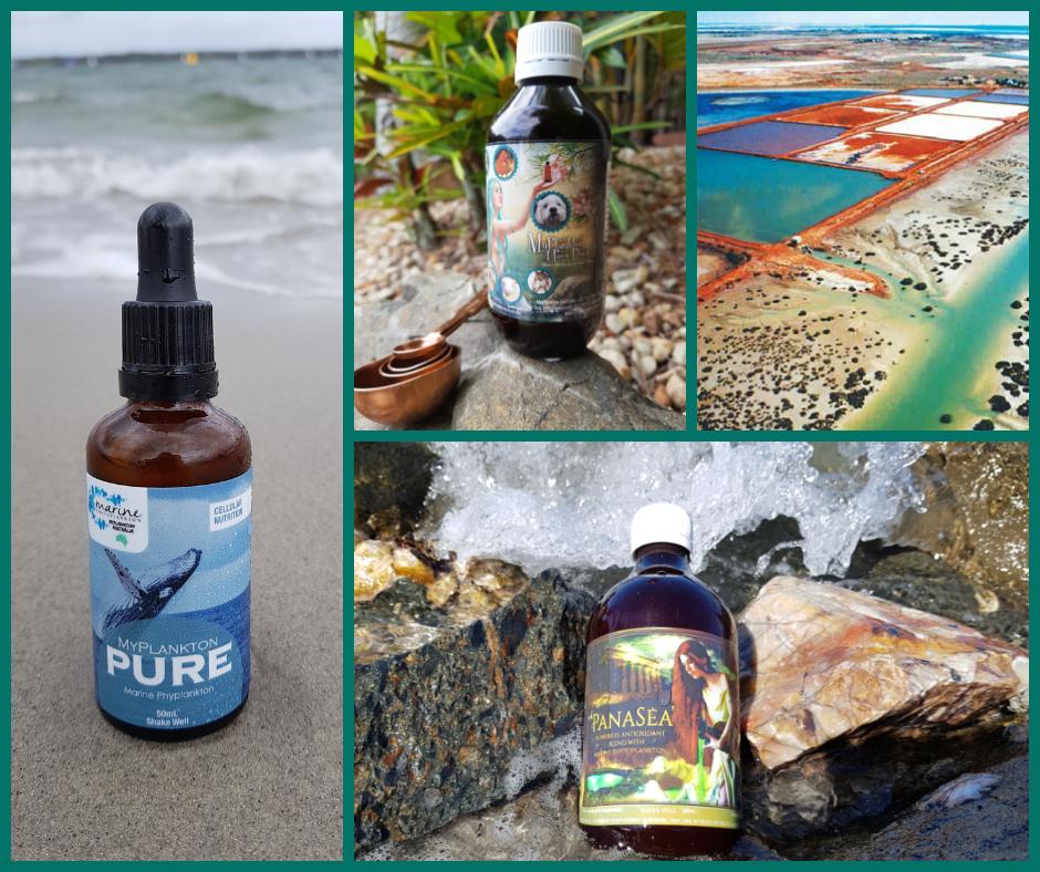 Pure_4Paws_PanaSea_Marine Phytoplankton SeaFarm